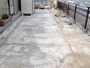 江戸川区西小岩 屋上防水 植木の移動・清掃写真