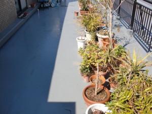 江戸川区西小岩 バルコニー防水 トップコート塗装後植木復旧写真